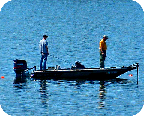 practical structure fishing